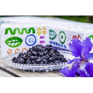 抗氧化高原蓝莓果干