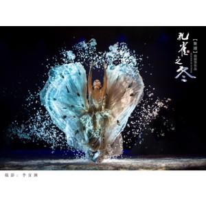 杨丽萍大型舞剧《孔雀之冬》北京站